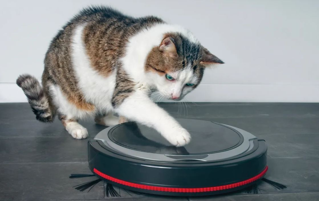 Best Robot Vacuum Cleaner for Pet Hair Review by BestCartReviews