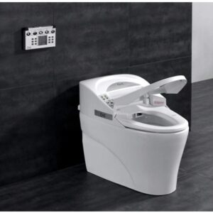 8 Best Modern Toilets: Brands, Ratings, Reviews, & FAQ's 2021